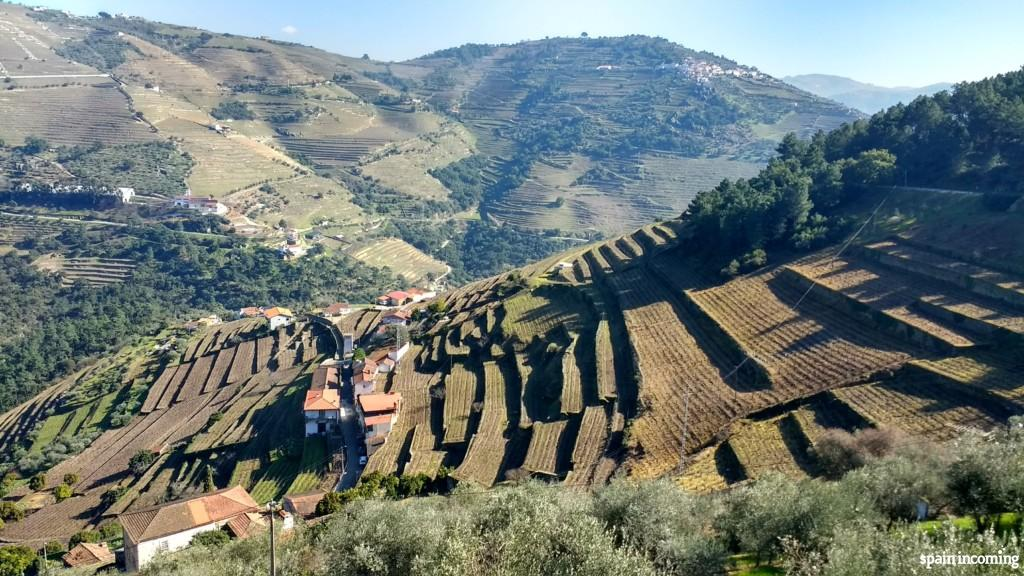 Douro Vinhateiro Landscape - UNESCO World Heritage