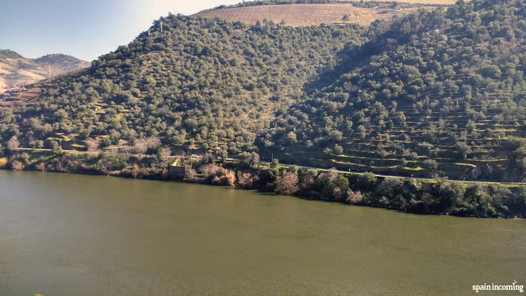 Vineyards and Douro River