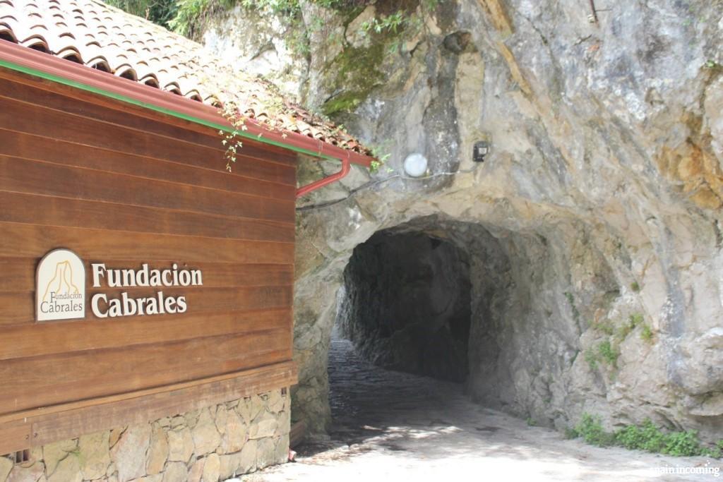 Fundación Cabrales