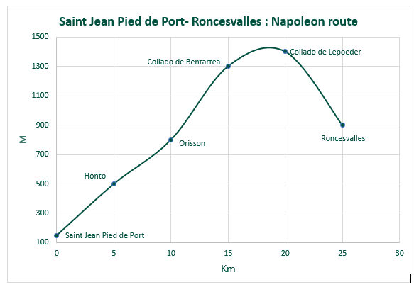 Napoleon route profile