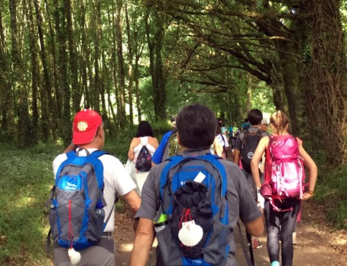 Tips for a successful Camino de Santiago