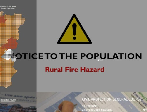 Portuguese and Galician (spain) wildfires are under control