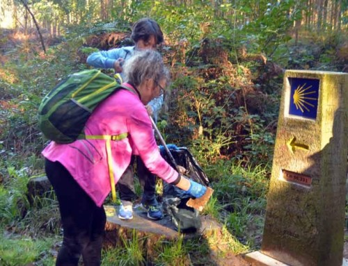 5 Eco-tips to experience sustainable Camino