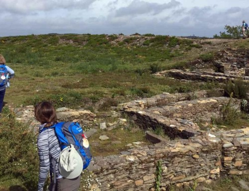 What is the official route of the Camino de Santiago?
